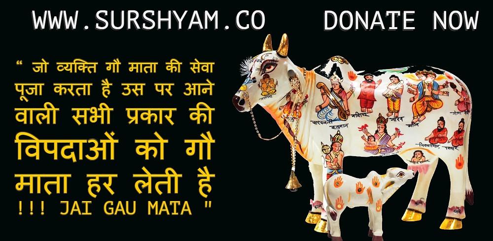 Sur shyam Gaushala Benefits of Gau Seva