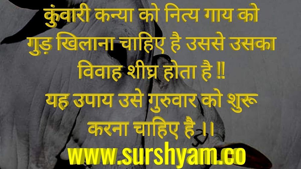Sur Shyam Gaushala Cow Quotes