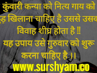 Value Of Cow in Astrology - Sur Shyam Gaushala !!