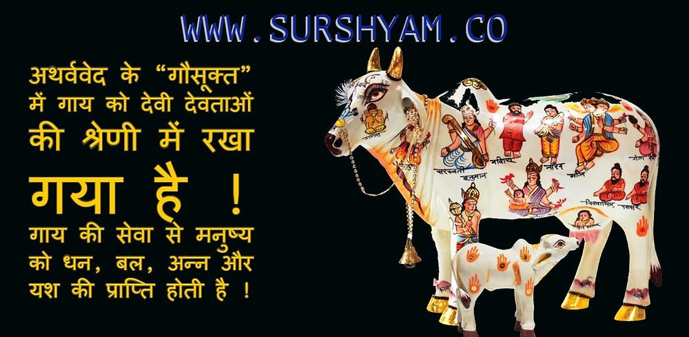 Sur Shyam Gaushala Parasoli Govardhan mathura