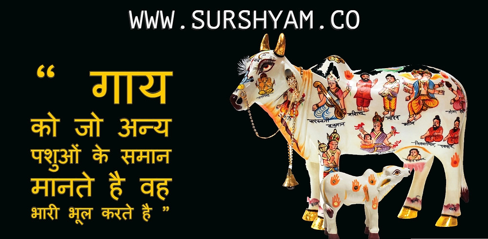 Sur Shyam Gaushala