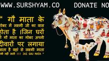 Gau Mata ke Gobar Me Lakshmi Ji Ka Vaas hota hai - Sur Shyam Gaushala