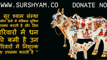 Help The Needy - Where the Needy is Real boss - Sur Shyam Gaushala