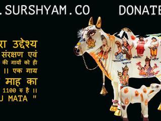 Our Aim - Sur Shyam Gaushala !!