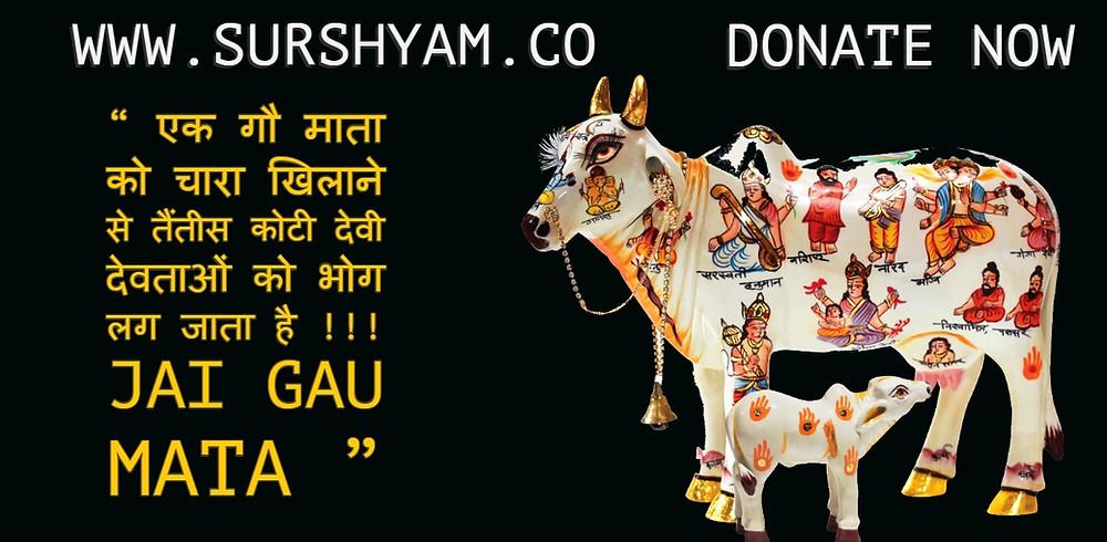 Sur Shyam Gaushala Tetik Koti Devi Devta