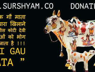 Tetis Koti Devi Devta - Sur Shyam Gaushala Govardhan Mathura