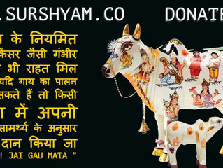 Treatment of Cancer is Possible with Gau-Mutra - Sur Shyam Gaushala