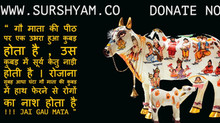 आधा घंटा हाथ गौ माता पर रोज फेरे - Sur Shyam Gaushala