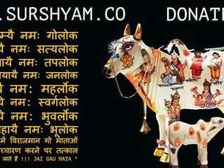 Sur Shyam Gaushala - Nitya Japiye !!
