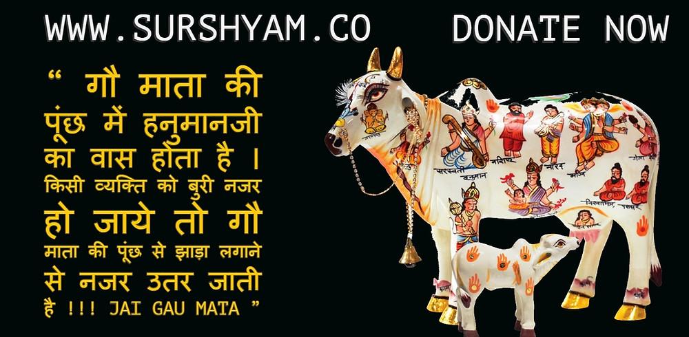 Sur Shyam Gaushala Gau Mata Ki puch Me Hanuman Ji