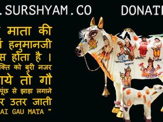 Gua Mata Ki Punch - Sur Shyam Gaushala