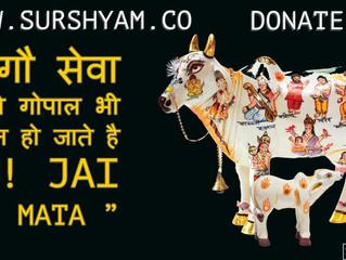 Thakur Ji Bhi Khush Hote Hai Gau Seva Se - Sur Shyam Gaushala