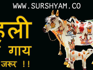 First Roti To Cow - Sur Shyam Gaushala