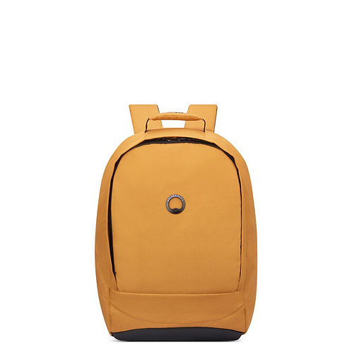 Delsey Securban Backpack 15.6''