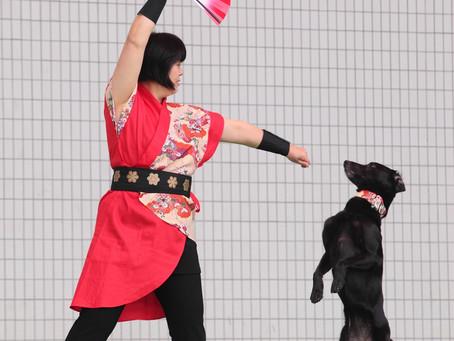 ドッグダンス・ルンルン♥セミナー