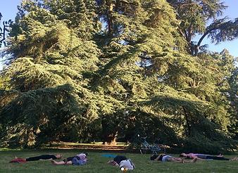 yoga_visuel garden party oberthur.png