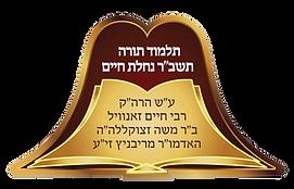 Ribnitzer Rebbe's Mosdos