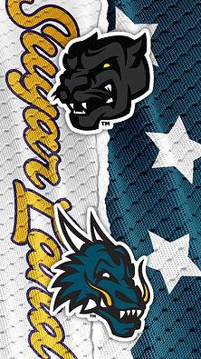 Panthers VS Dragons
