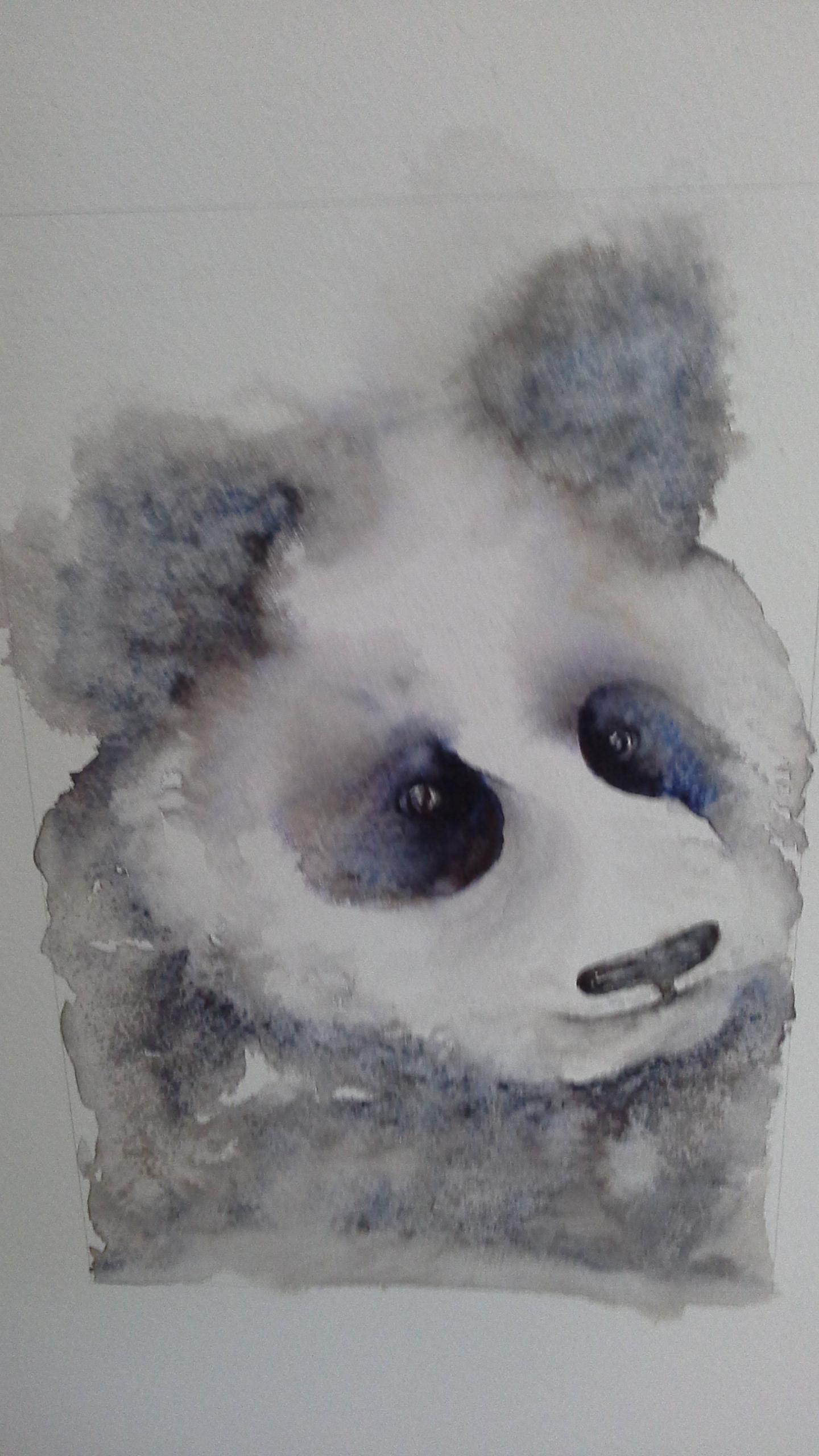 Pandappeal