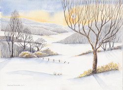 Cotswold Winter