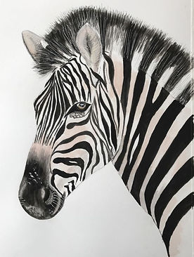 zebra_edited.jpg