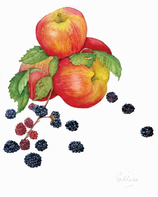 Apples & Blackberries