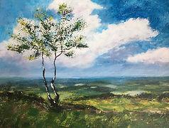 Sue Wrekin View Shropshire.jpeg
