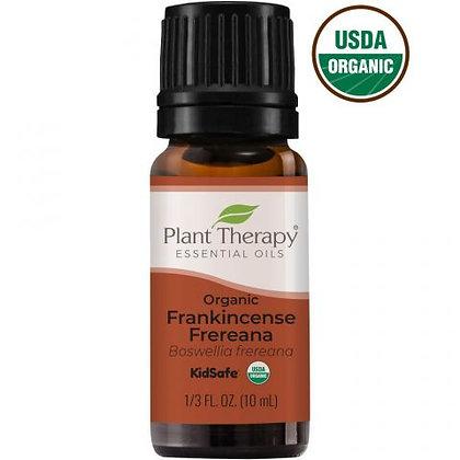 Organic Frankincense Frereana Essential Oil