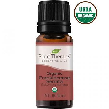 Organic Frankincense Serrata Essential Oil