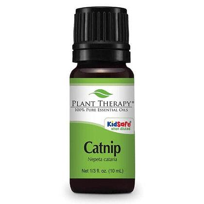 Catnip Essential Oil
