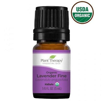 Organic Lavender Fine Essential Oil
