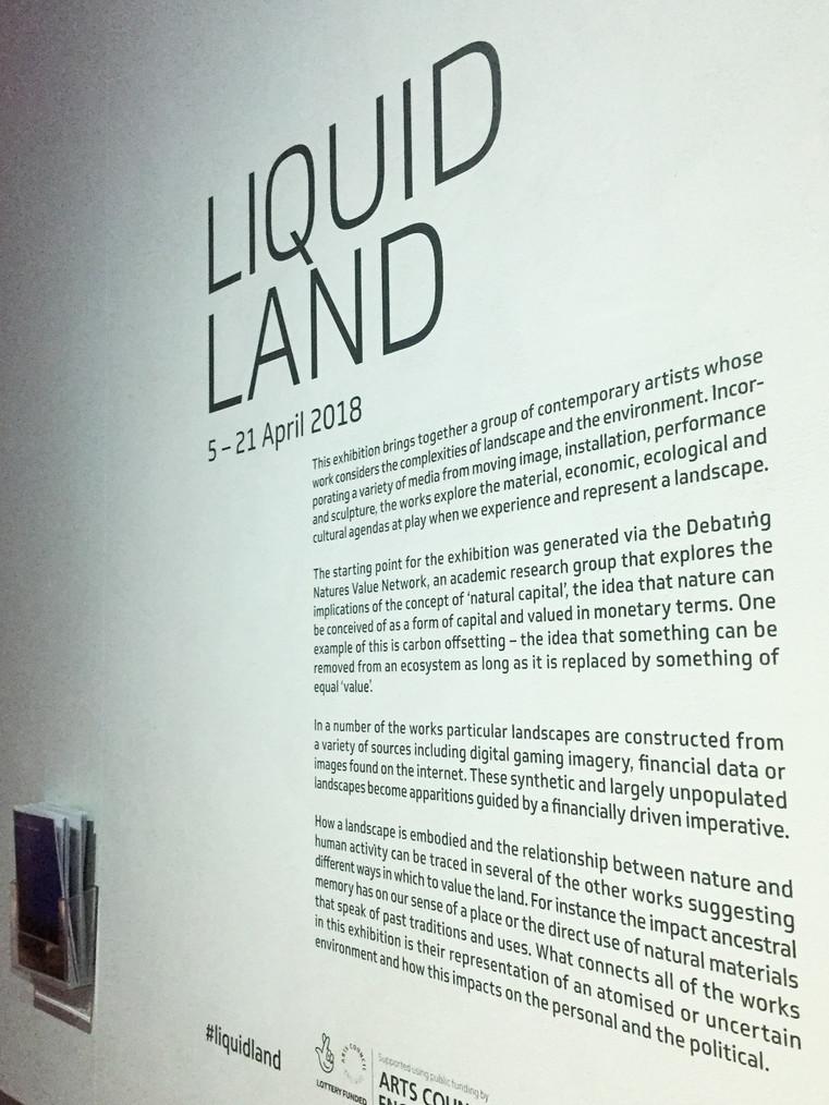 Liquid Land Vinyl