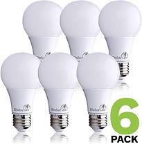 Bioluz LED 60 Watt Light Bulb, LED Light