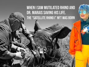 How NFTs are boosting efforts to save endangered Rhinos