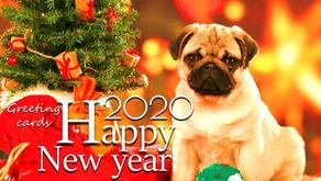 Vuurwerk, gelukkig nieuwjaar en vakantie....