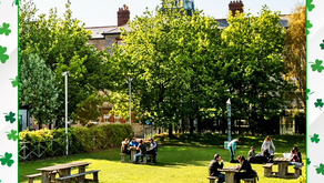 Studij u Irskoj - Griffith College