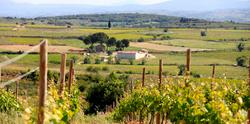 Vignobles Prissette - Château ROC -
