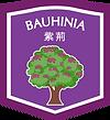 Bauhinia_Flag_New_O.png