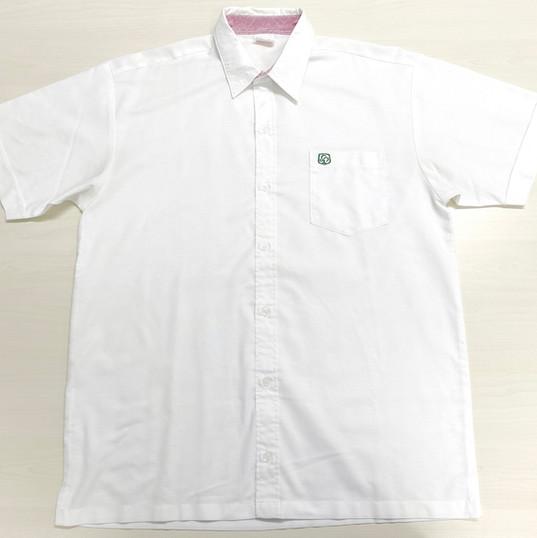 (夏季) 高中男恤 (Summer) F.4 - F.6 Boy Shirt