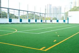 Astroturf Multipurpose Ball Court