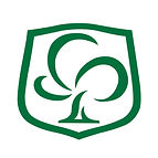 CSS Logo FB.jpg