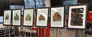 Plight of the butterfly.jpg