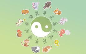 """""""The Chinese Zodiac/Sheng Xiao"""" by Brenda Nguyen"""