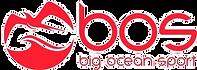 BOS_LOGO_410x_edited_edited.png