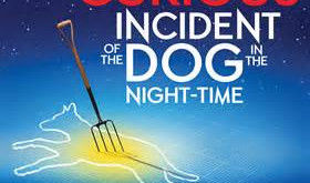 The Curious Incident of the Dog in the Night-Time returns.
