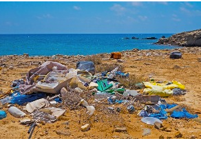 Plastic Pollution Is a Global Crisis