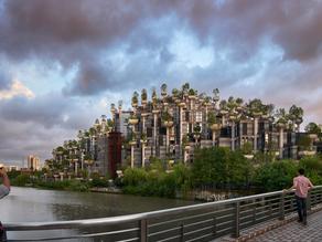 The 1,000 Trees Development