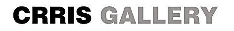 CRRIS GALLERY logo.jpg