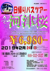 河津桜1.24_edited.jpg