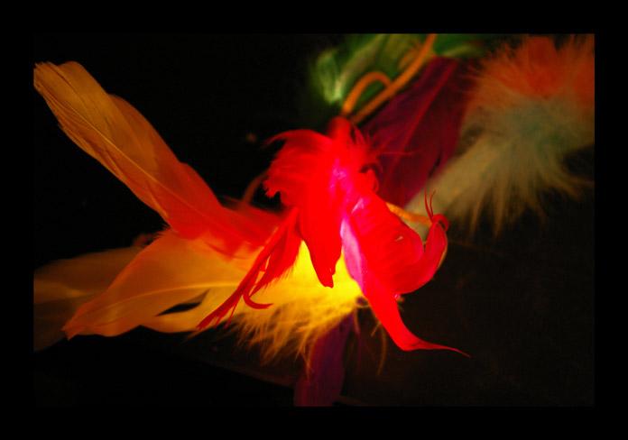 flameandfeather